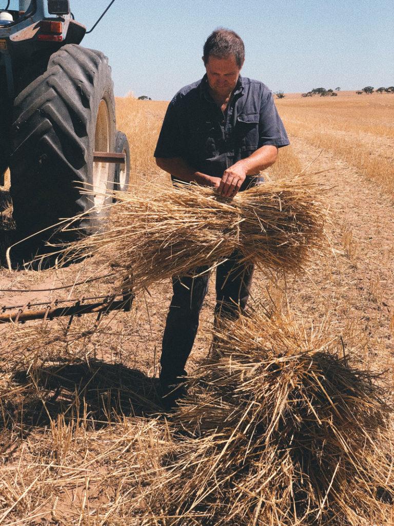 Mister RYE farming partner