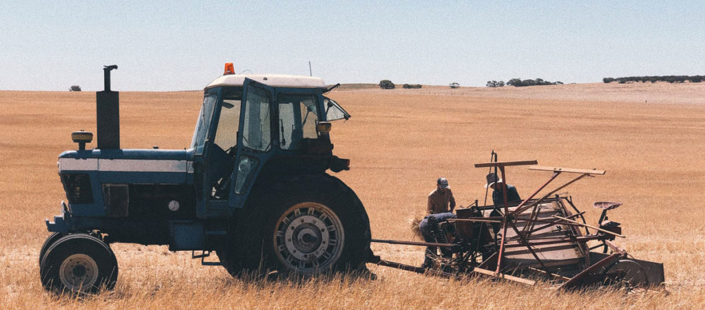 mister rye harvest 2020 in South Australia